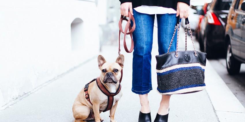 Prelovee Publicee: Who is Mocca shoppt bei Prelovee