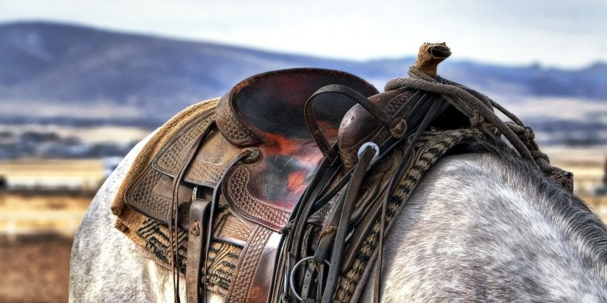 Cowboy-Look: Cowgirls are back in town
